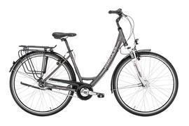 winora radius plain 2016 20 zoll g nstig kaufen fahrrad xxl. Black Bedroom Furniture Sets. Home Design Ideas