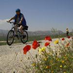 Radfahrerin im Frühling © www.baetica-reisen.de