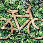 Mal kurz die Welt retten – mit dem Fahrrad