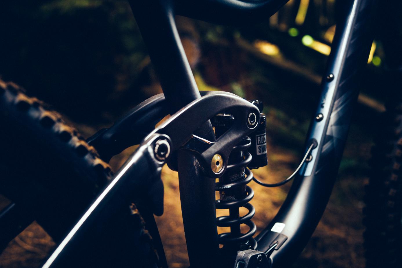 Giant Reign 2018 - perfektes Rad für die Enduro-Strecke?