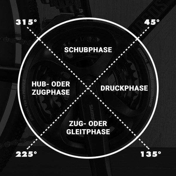 Die 4-Phasen des runden Tritt