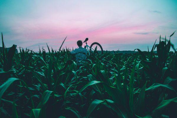 Fahrradfahren bei Krankheit oder Erkältung - gesund oder gefährlich?