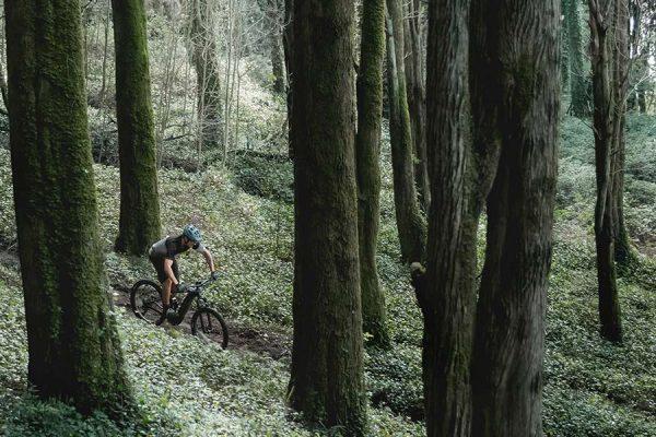 Giant E-Bikes 2019 » Neuheiten & Modelle