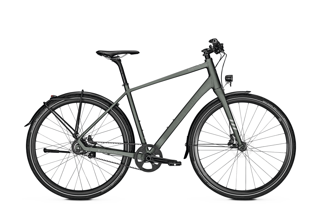 Kalkhoff 2019 Endeavour Lite 8