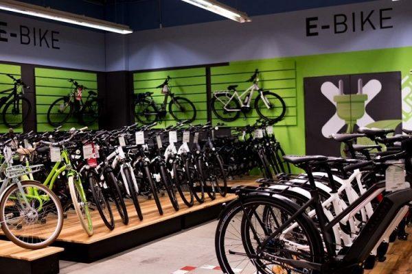 E-Bike Markt 2019 - Markenvielfalt