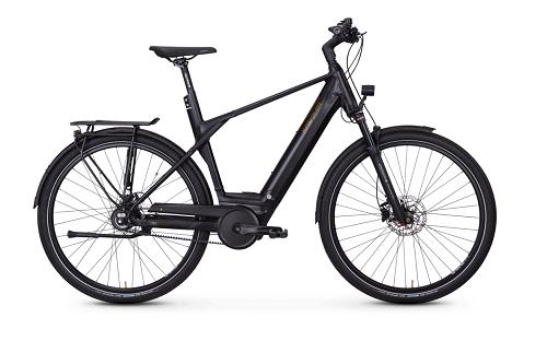 Vitality Eco 20 das Topmodell City E-Bike