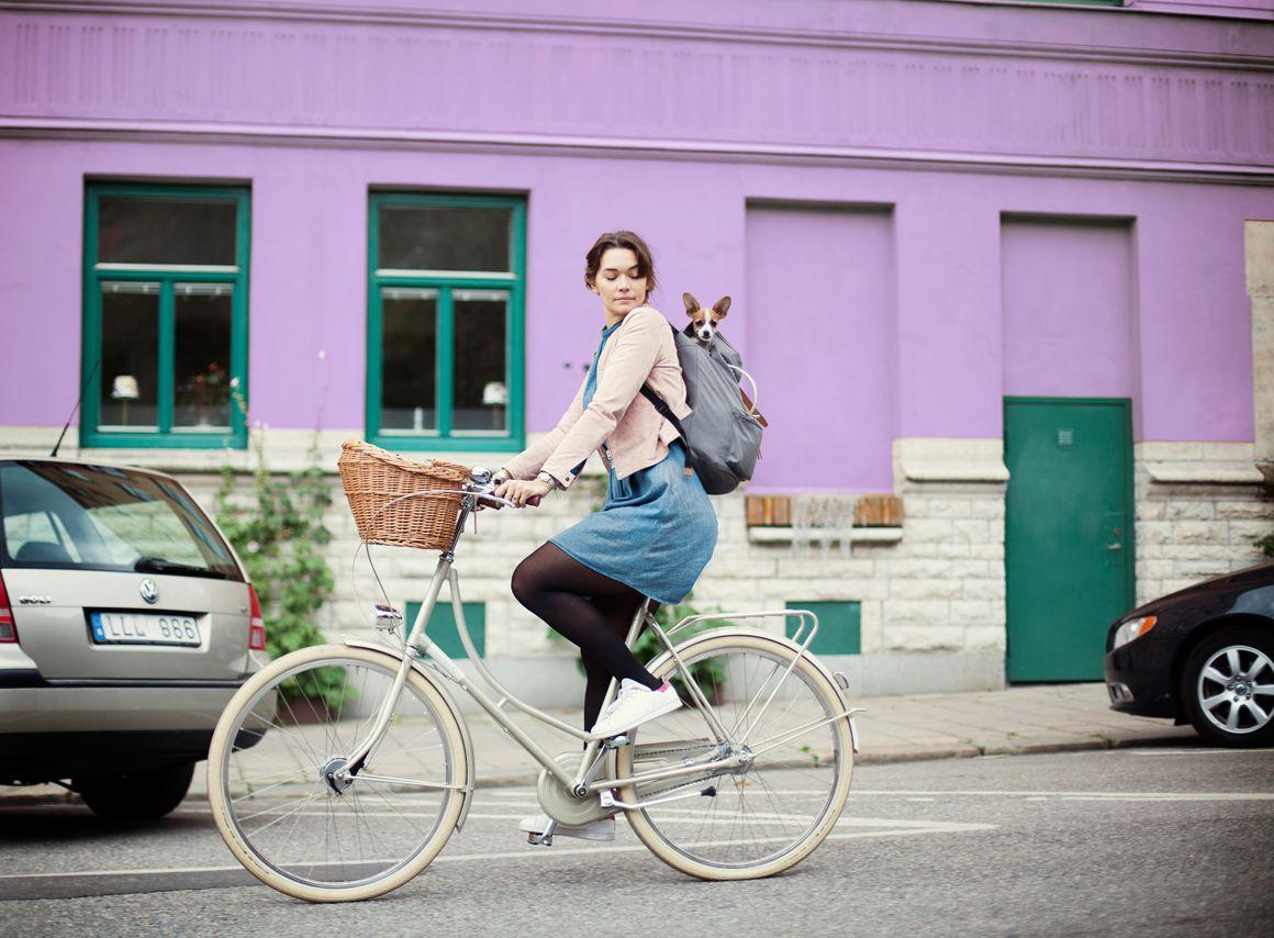 Das schöne Retro Fahrrad