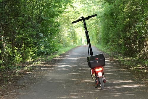 Zugewachsener Radweg