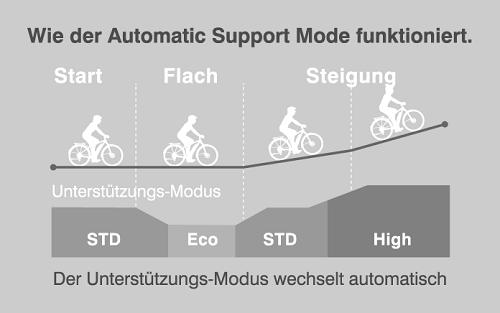 Yamaha Automatic Support Mode