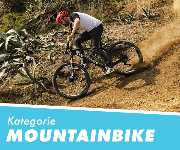 Fahrrad XXL Blogawards 2020 Kategorie: Mountainbike