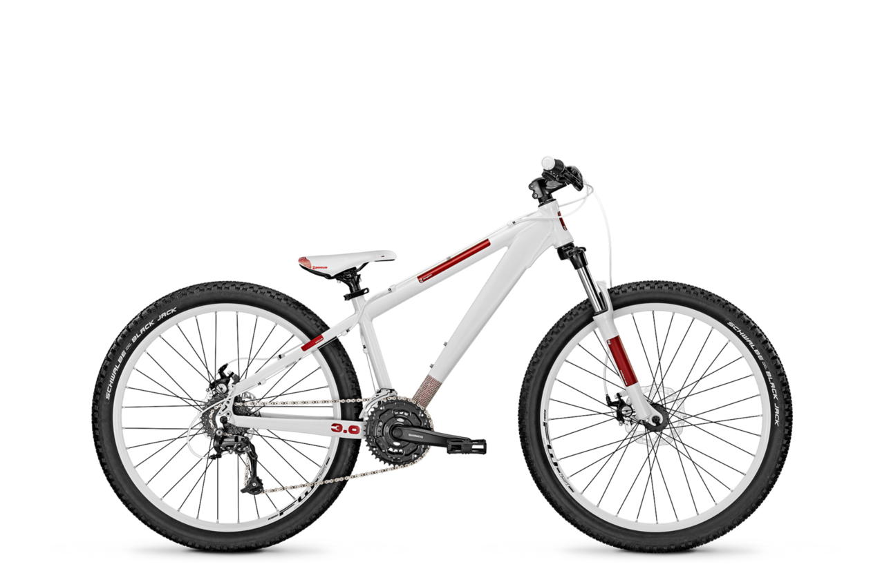 Focus Dog Fish 3.0 - 2014 - 26 Zoll - Hardtail