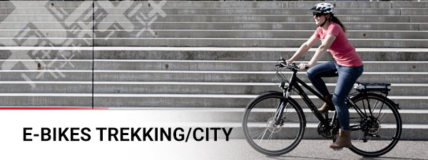 E-Bike Trekking/City