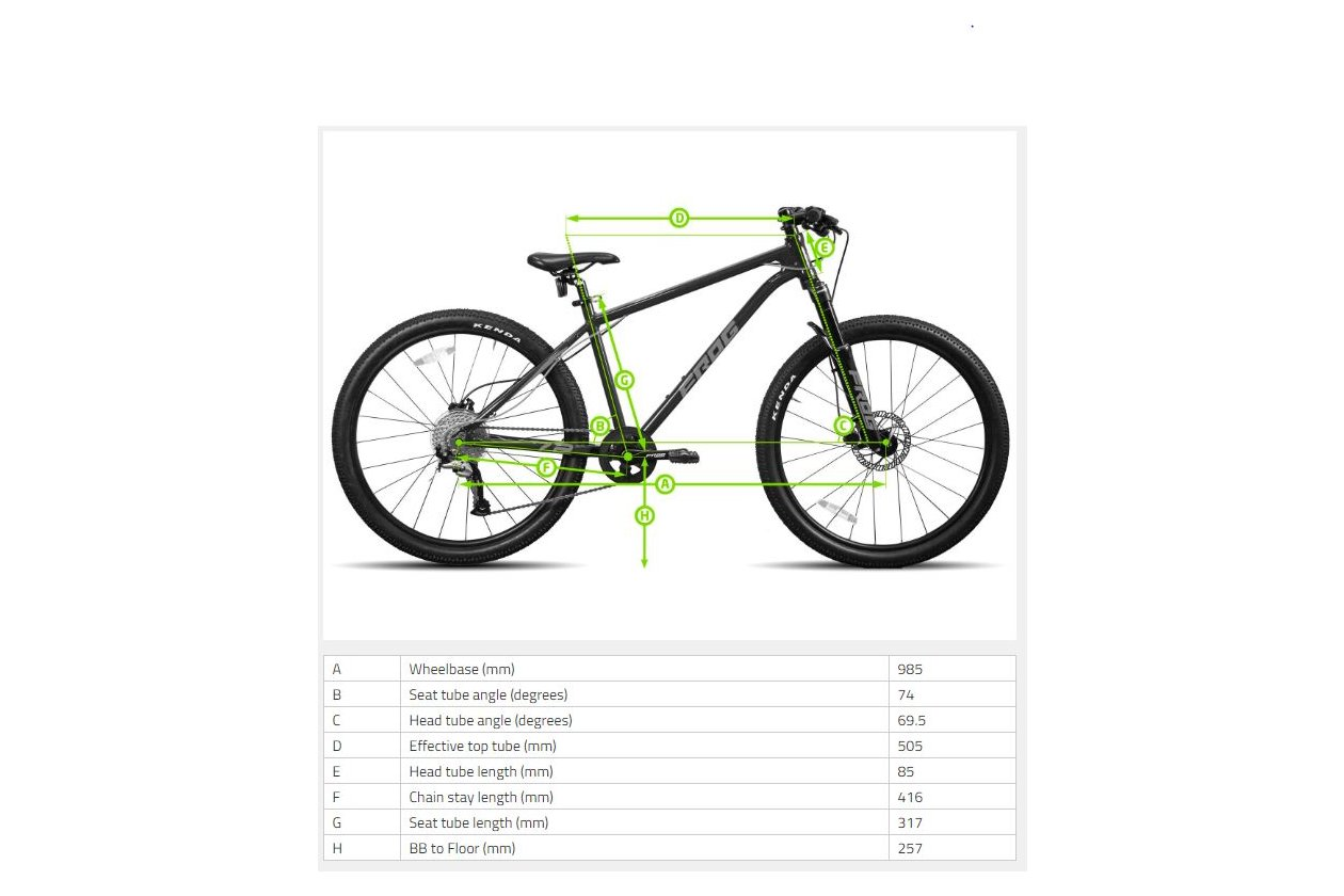 Frog MTB 62 - 2019 - 24 Zoll - Hardtail