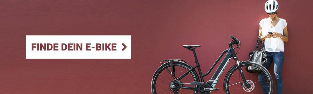 fcd06a85b709a6 Welchen Unterschied gibt es zwischen E-Bike und Pedelec