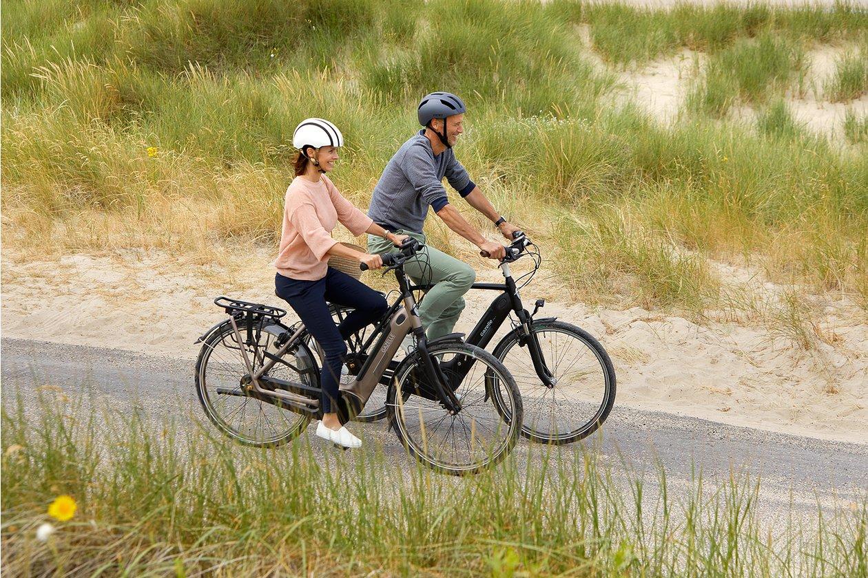 fahrrad xxl gef hrte e bike pedelec touren. Black Bedroom Furniture Sets. Home Design Ideas